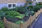 I Malmø har beboere taget initiativ til at lave køkkenhaver foran deres bygning midt i byen.