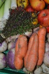Bæredygtighed, friske grøntsager ogfællesskab