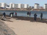 Beach Clean-up Day2019